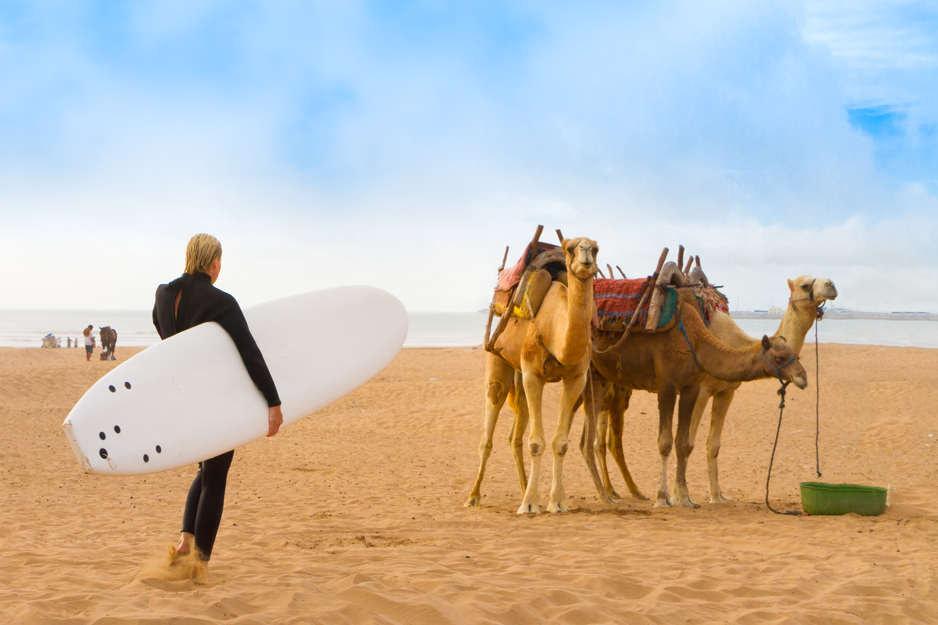 Top 5 Beginner Surf Beaches in Morocco