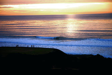 Why Surf California?