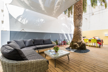The patio with the outside lounge and palmtree